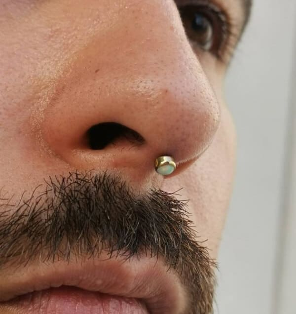Septril Piercing: The Complete Experience Guide