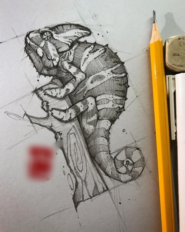 Easy Pencil Drawings Of Animals